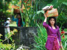 Masyarakat Bali
