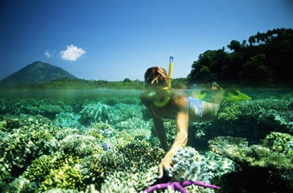 Snorkeling di Pulau Menjangan