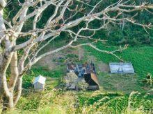 Desa Wisata Tanglad